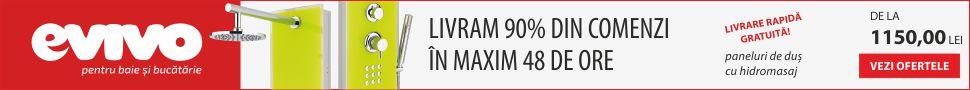 970x90_evivo_livrare_rapida_paneluri_dus_hidromasaj