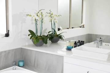 orhidee-alba-in-baie